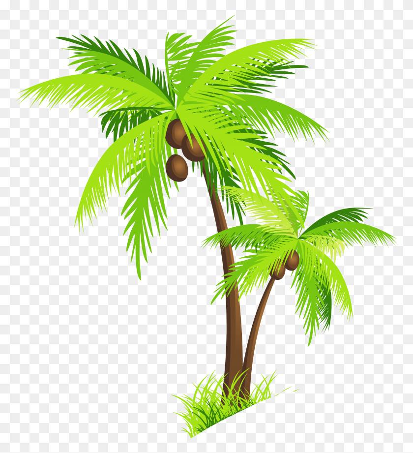 Png Coconut Tree Transparent Coconut Tree Images - Palm Tree With Christmas Lights Clipart