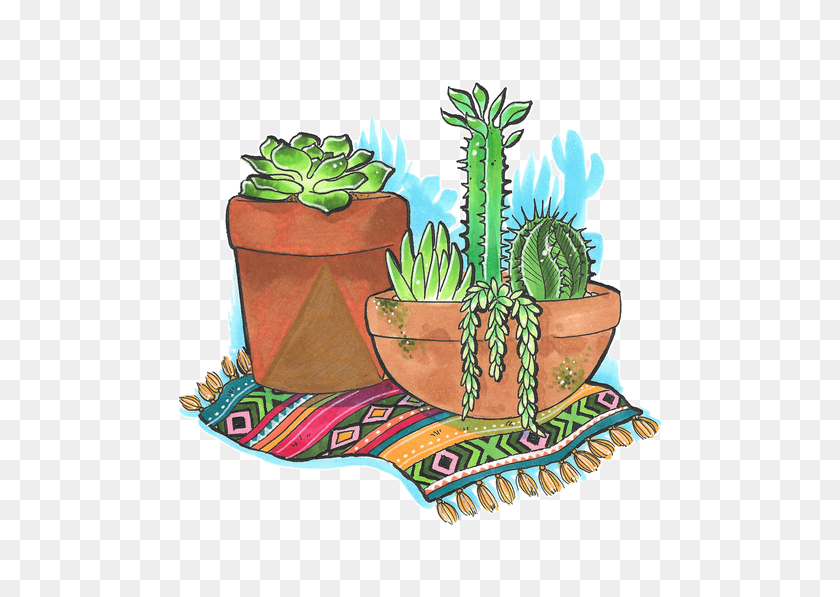 Cactus Tumblr Cute Green Perfect Nice Plant Decor Perfe - Tumblr