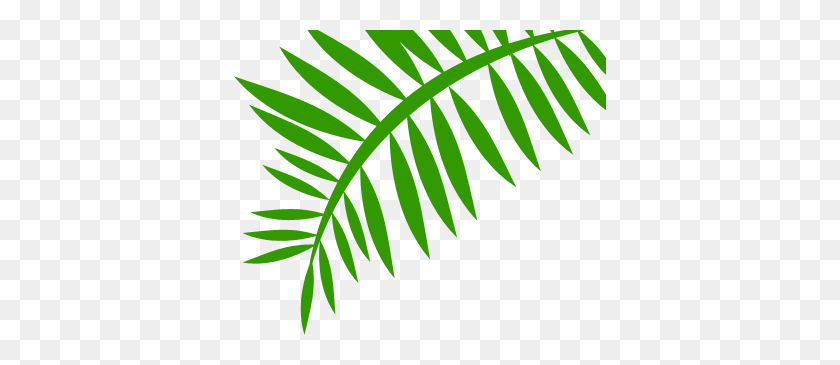 Png Jungle Leaf Transparent Jungle Leaf Images - Rainforest Background Clipart