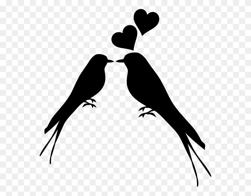 Png Small Medium Large Love Birds Silhouette Bird - Birds Silhouette PNG