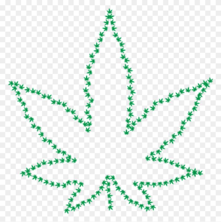 Poco Seeks Feedback On Proposed Cannabis Sales - Babys Breath Clipart