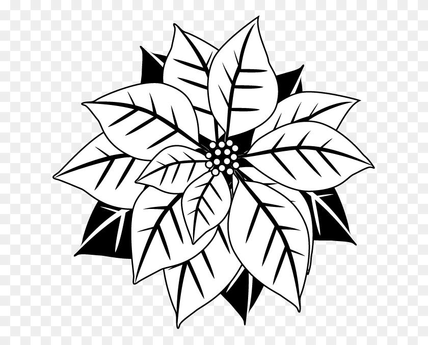 Poinsettia Clipart - Church Clipart Black And White