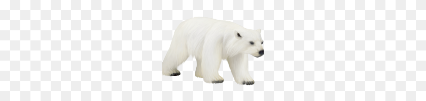 Polar Bear Clipart Polar Bear Bear Clip Art Polar Bear - Polar Bear Clipart
