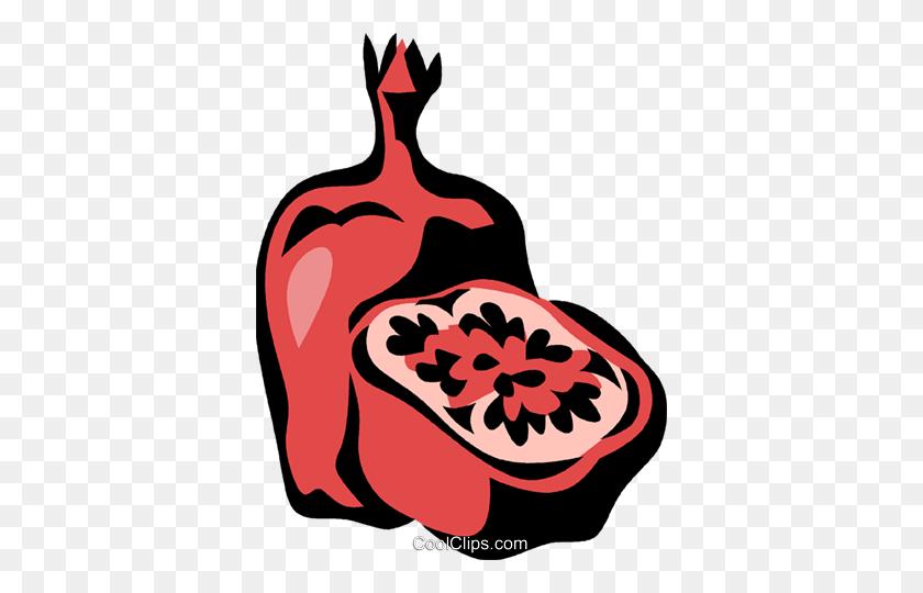 Pomegranate Royalty Free Vector Clip Art Illustration - Pomegranate Clipart