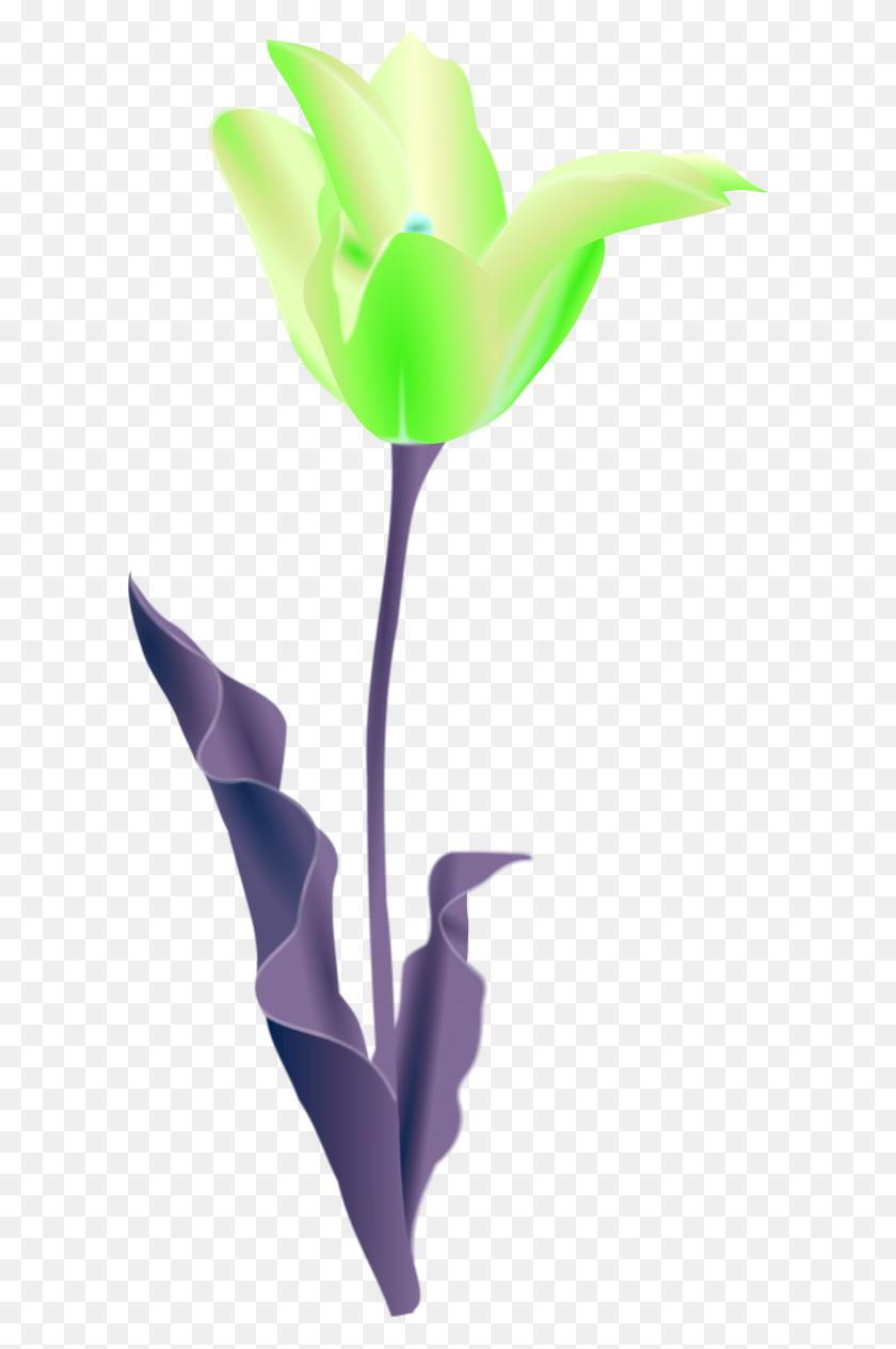Poppy Flower Clip Art - Poppy Clipart