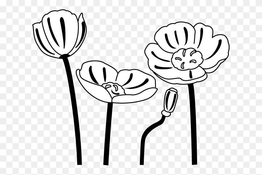 Poppy Flower Pictures Clip Art - Poppy Clipart