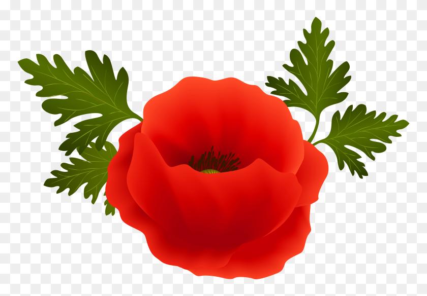 Poppy Png Clip Art - Poppy Clipart