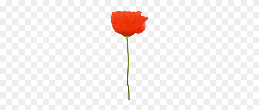 Poppy Png Images, Icon, Cliparts - Poppy Clipart