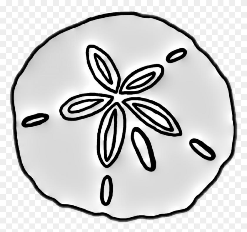 Popular And Trending Sanddollar Stickers - Sand Dollar Clip Art