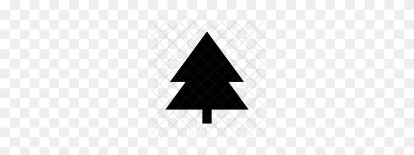 Premium Pine Tree Icon Download Png - Pine Tree PNG