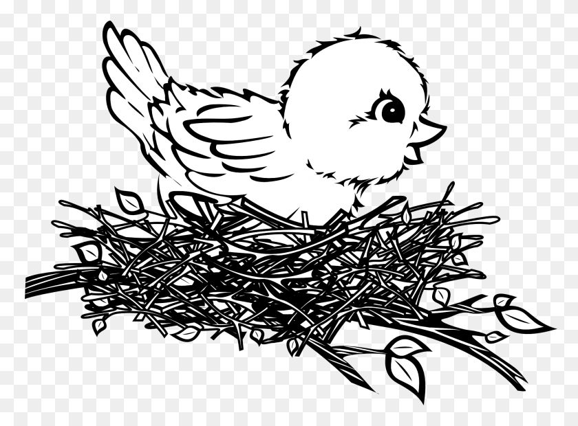 1920x1379 Product - Bird In Nest Clipart