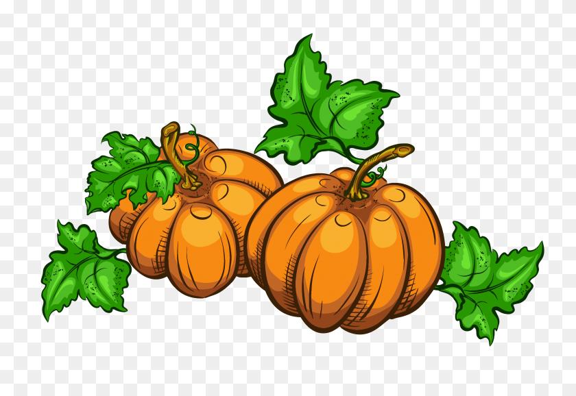 4031x2682 Pumpkin Clipart Transparent Clip Art Images - Pumpkin Clipart Free Black And White