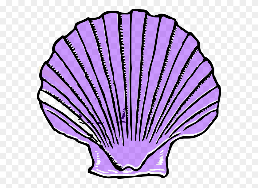 Purple Seashell Clipart - Seashell Border Clipart