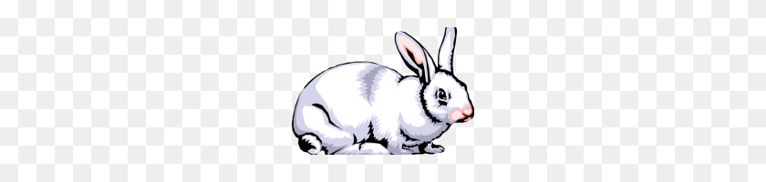 Rabbit Clipart Free Rabbit Clipart - Rabbit Face Clipart