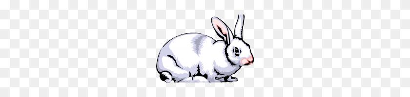 Rabbit Clipart Free Rabbit Clipart - Rabbit Face Clipart