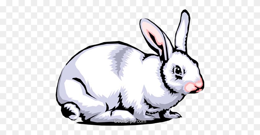 Cartoon Hare Clipart (#1804043) - PinClipart