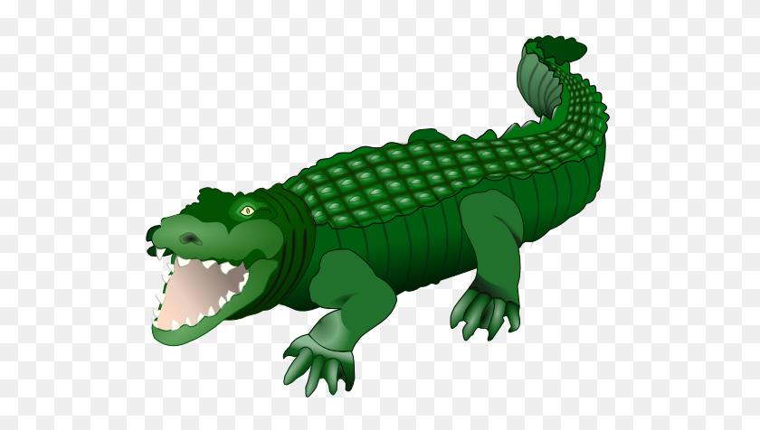 Rainforest Clipart Crocodile - Rainforest Background Clipart