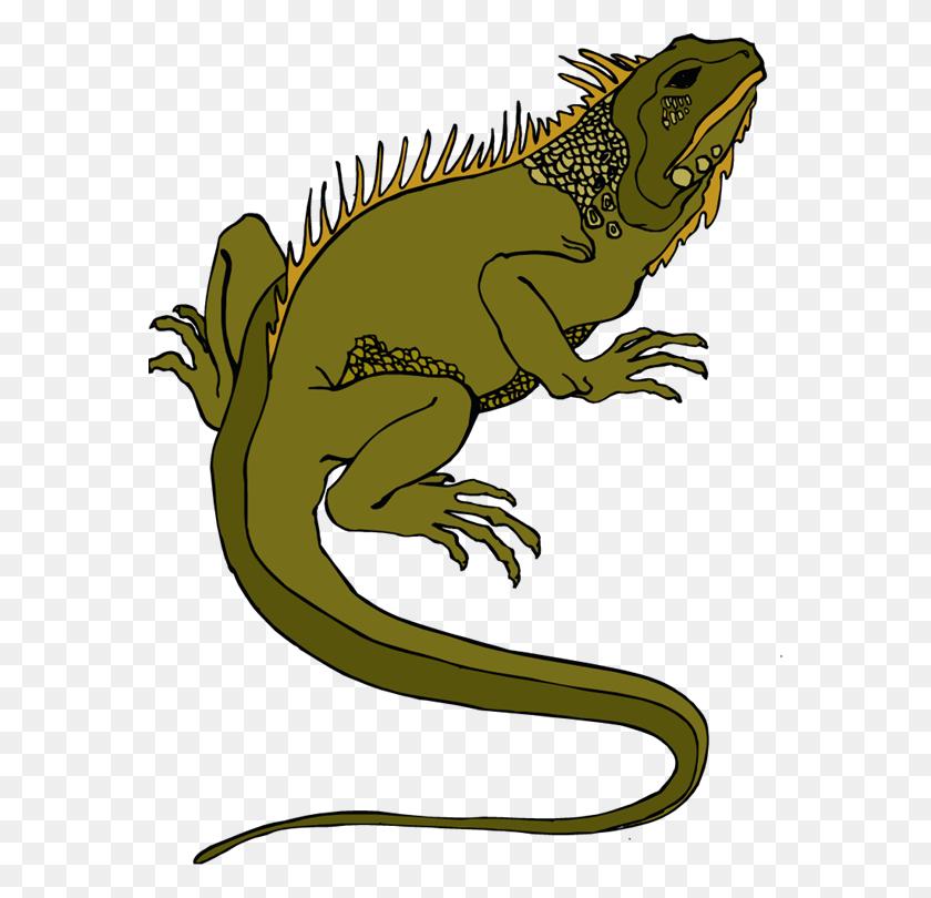 Rainforest Clipart Reptile - Rainforest Clipart Black And White