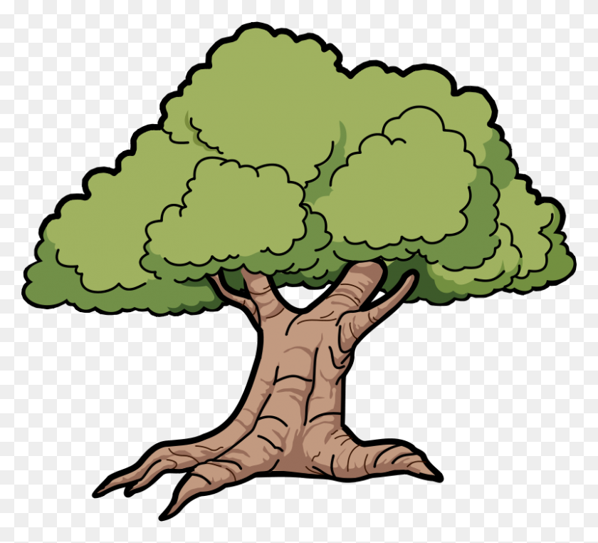 Rainforest Trees Clipart - Rainforest Animals Clipart