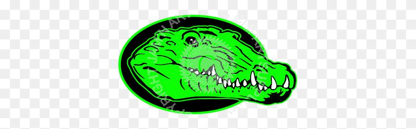 Realistic Gator Head In Color - Gator Head Clipart