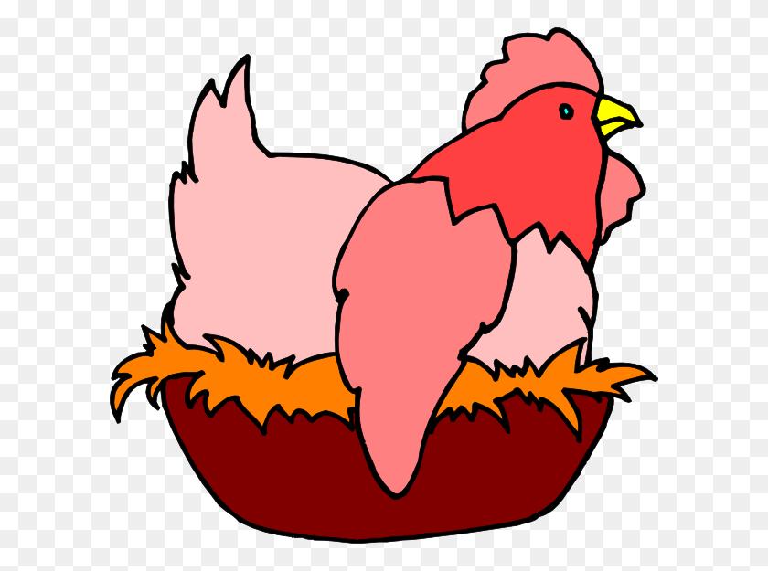 Red Chicken In A Nest Clip Art - Bird Nest Clipart
