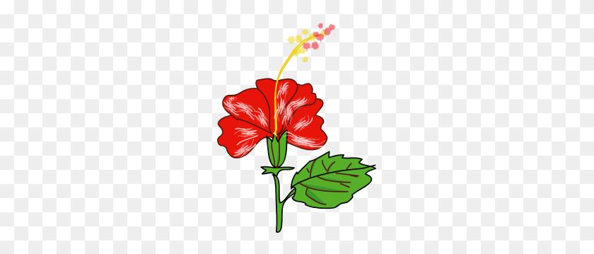 Red Clipart Gumamela - Moana Flower Clipart