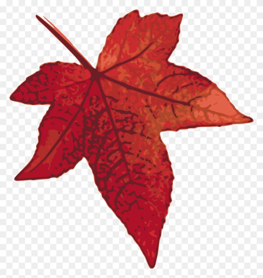 Autumn Leaf Png - Maple Leaf PNG – Stunning free transparent