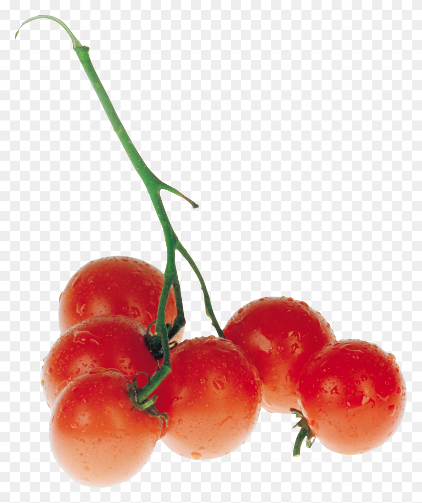 Red Tomatoes Png Image - Tomatoes PNG