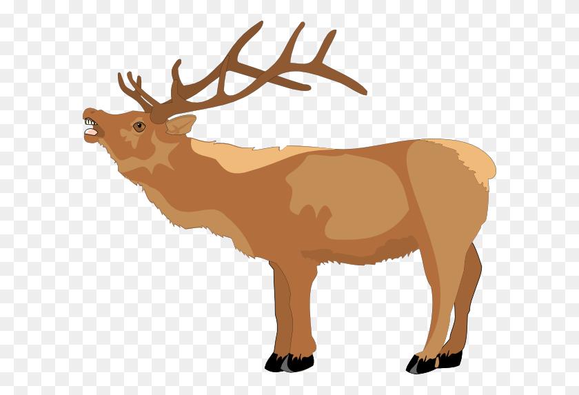 Reindeer Mooing Clip Art - Elk Clipart