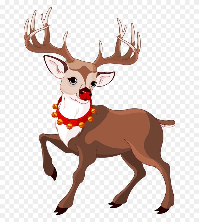 Reindeer Png Transparent Reindeer Images - Reindeer Face Clipart