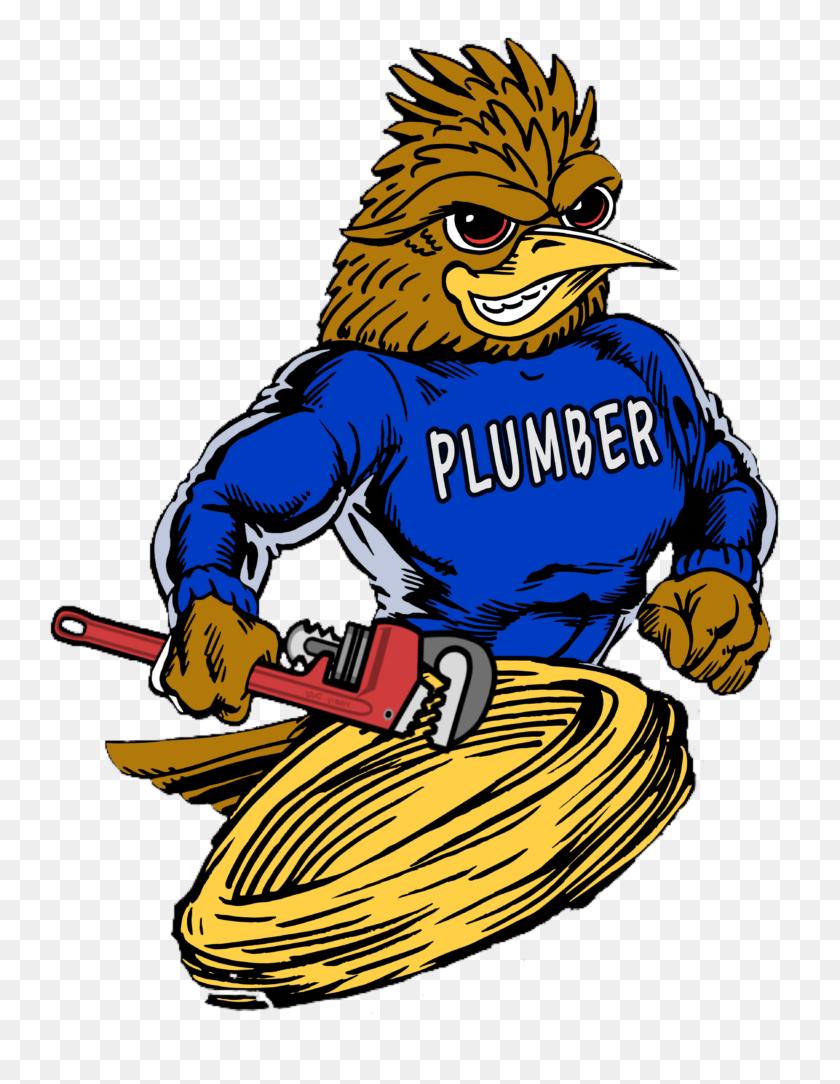 Roadrunner Plumber Plumbing Drain Service Phoenix Az - Roadrunner PNG