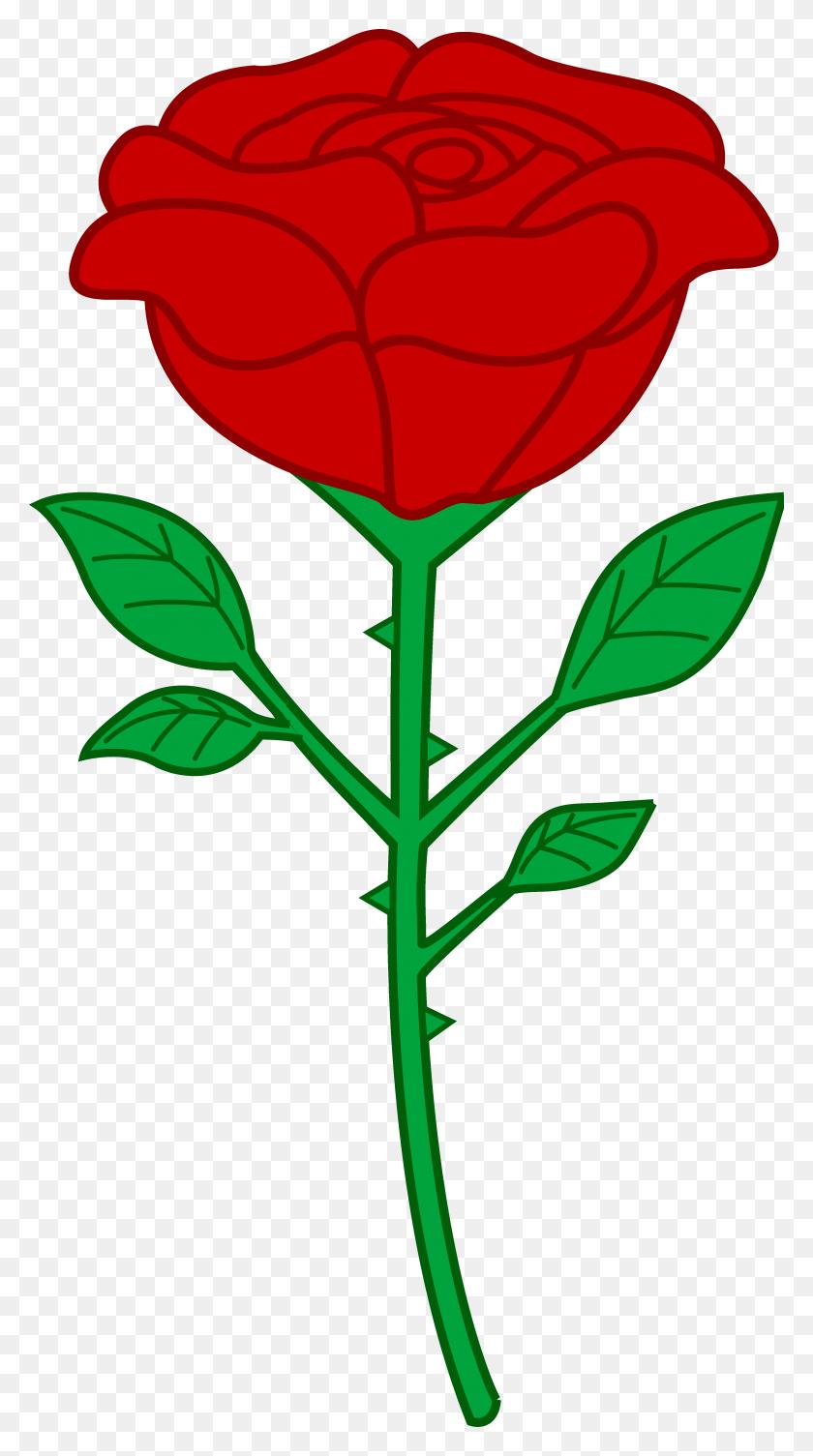 Rose Cartoon Smart Exchange Usa Rose Png - Cartoon Flower PNG