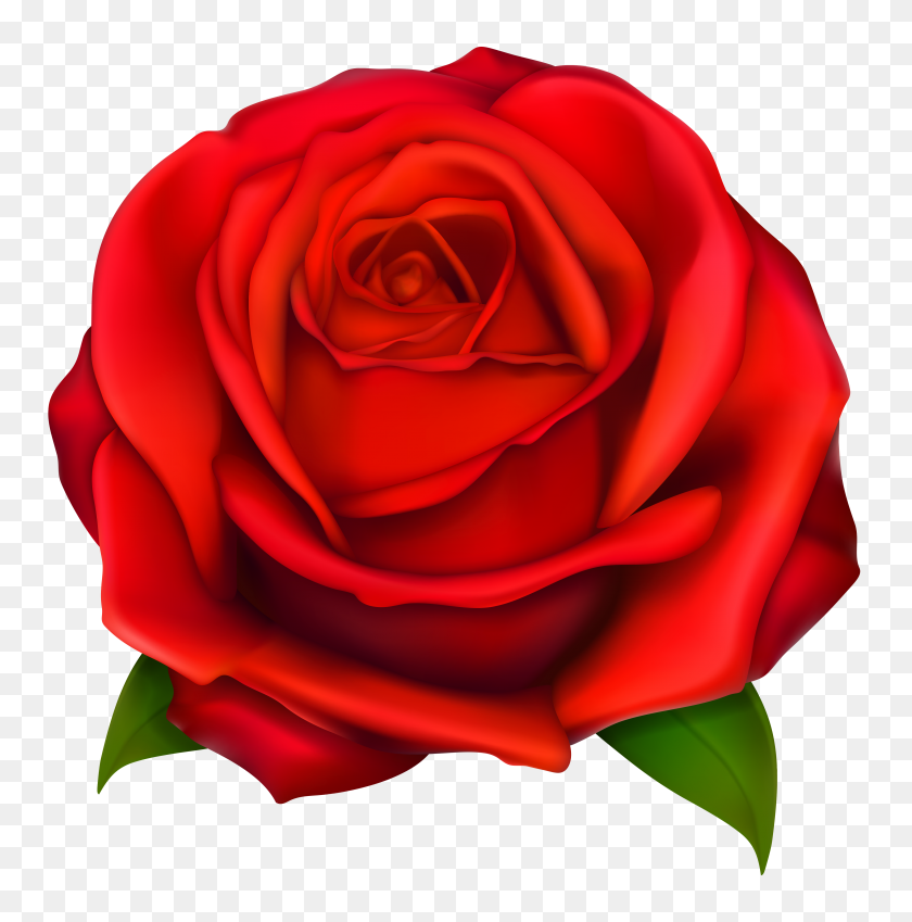 4084x4136 Rose Clip Art - Moon Clipart