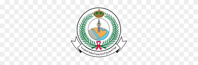 245x216 Royal Saudi Strategic Missile Force - Missle PNG