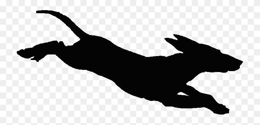 Running Dog Silhouette - Running Cat Clipart
