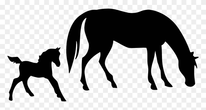 Running Horse Silhouette Clip Art Image Png M Movie - Running Horse Clipart