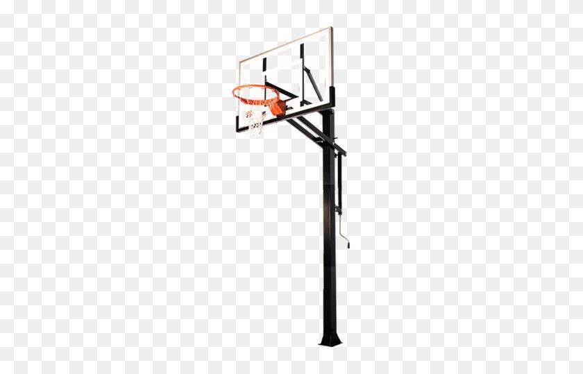 Ryval Driveway Series Basketball Hoop Tree Frogs - Basketball Net PNG