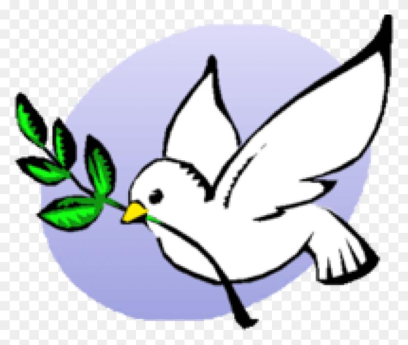 Niña Primera Comunión - First Holy Communion Cliparts - Png Download  (#5403930) - PinClipart