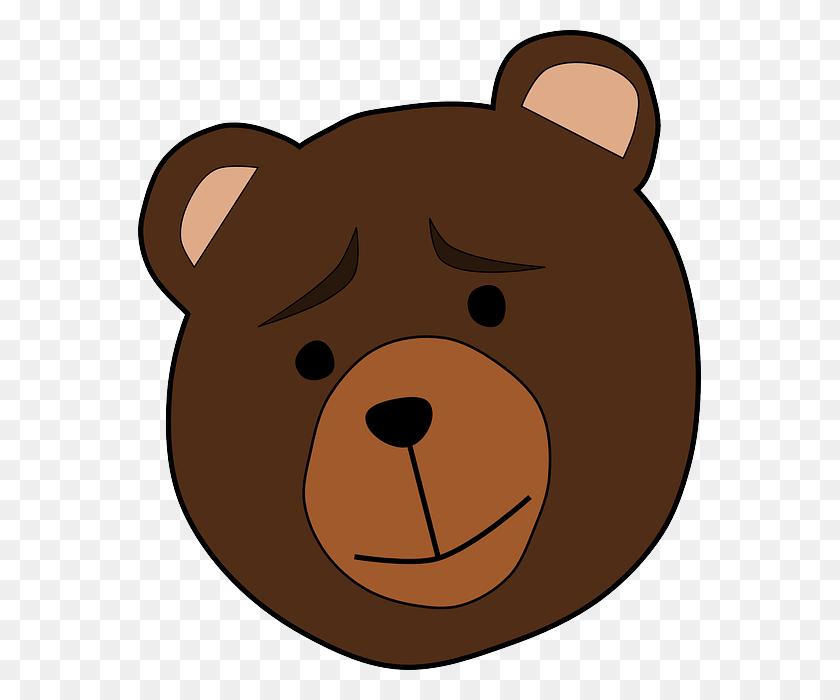 563x640 Sad Bear Improveself - Sad Dog PNG