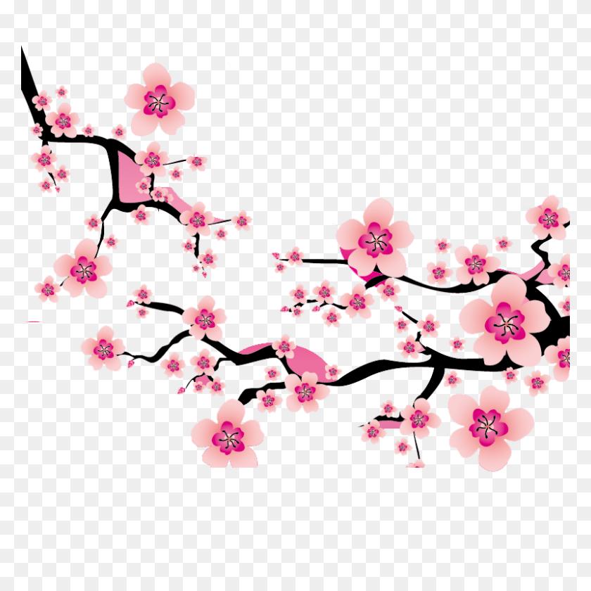 Sakura Blossom Clipart Plum Flower - Sakura Flower Clipart