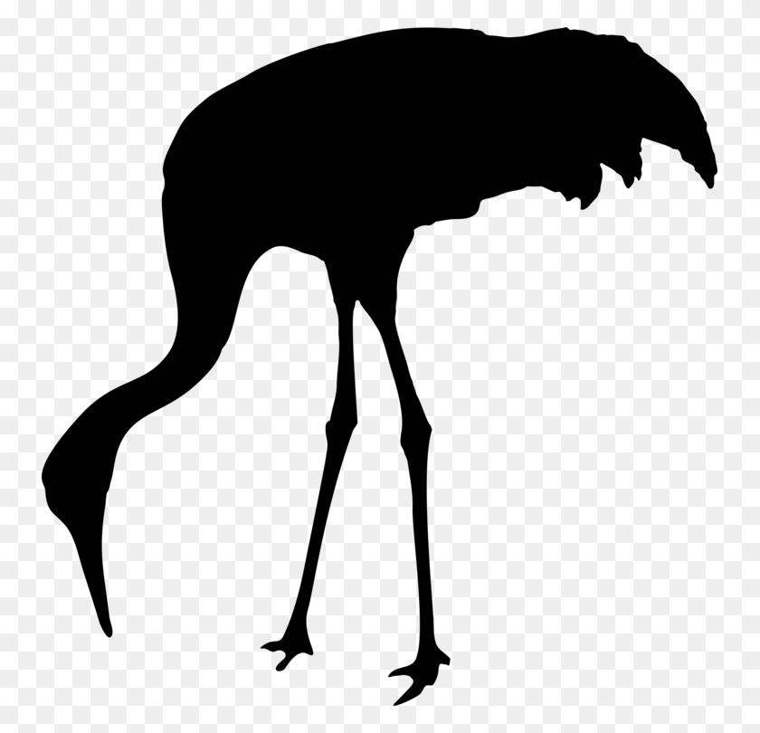 Sandhill Crane Bird Animal Silhouettes - Crane Bird Clipart