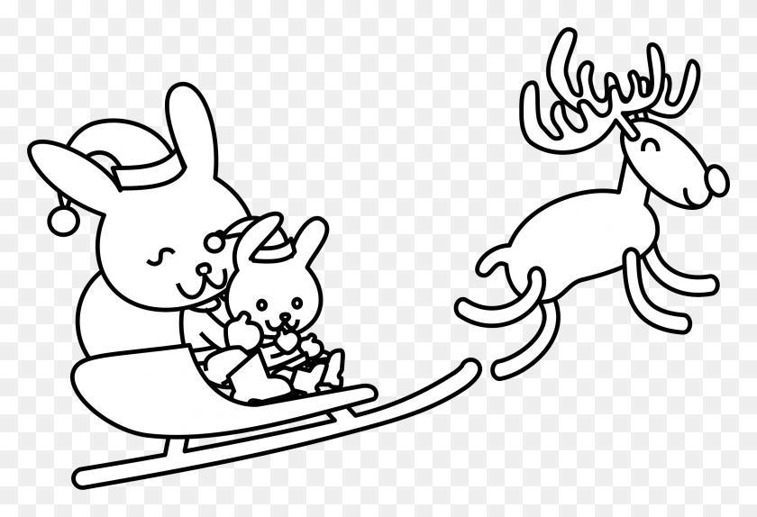 Santa Bunny Coloring - Coloring Pages PNG