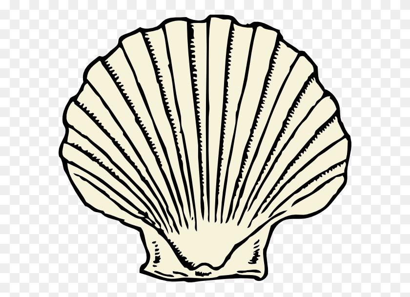 Scallop Shell Clip Art - Scallop Clipart