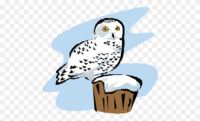 Scientist Clipart Owl - Scientific Method Clipart