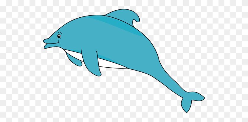 Sea Life Clipart Baby Dolphin - Marine Life Clipart