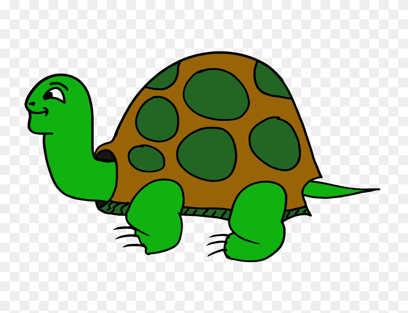 Sea Turtle Clipart Tortuga - Sea Turtle Clipart