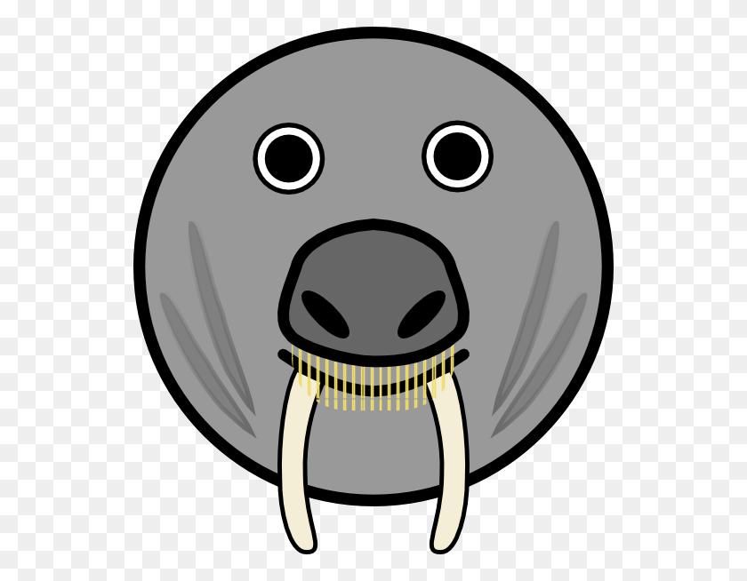 540x594 Seal Animal Rounded Face Clip Art Free Vector - Sacrament Clipart