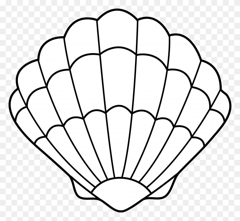 Seashell Outline Clip Art - Seashell Clipart