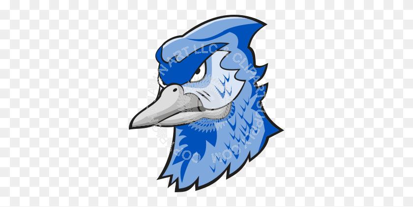 Serious Blue Jay Head - Blue Jay Clipart