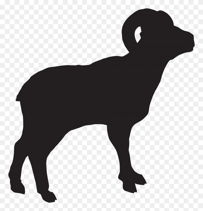 Shadow Clipart Sheep - Sheep Clipart